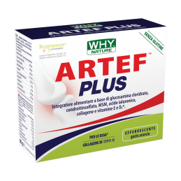 ARTEF PLUS